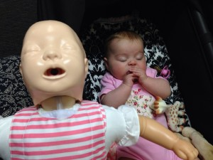 Millie does her best CPR manikin impersonation